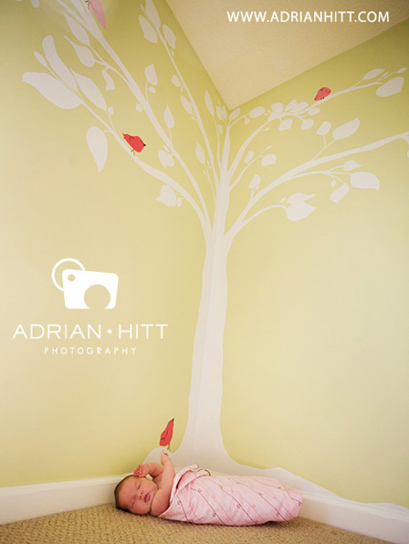 Family Photographer, Nashville, TN Adrian Hitt Photography