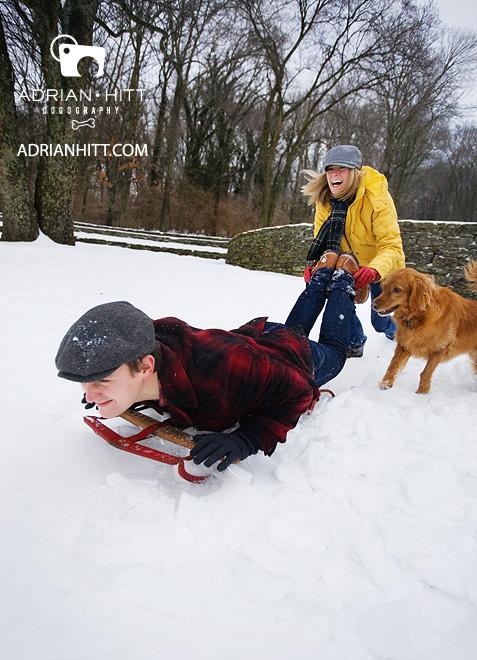 Dog Photographer Lifestyle Golden Retriever Nashville, TN