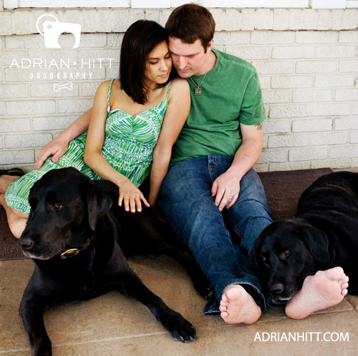 Nashville, TN Dog Photographer Adrian Hitt