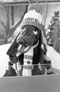 Farfel the Dog